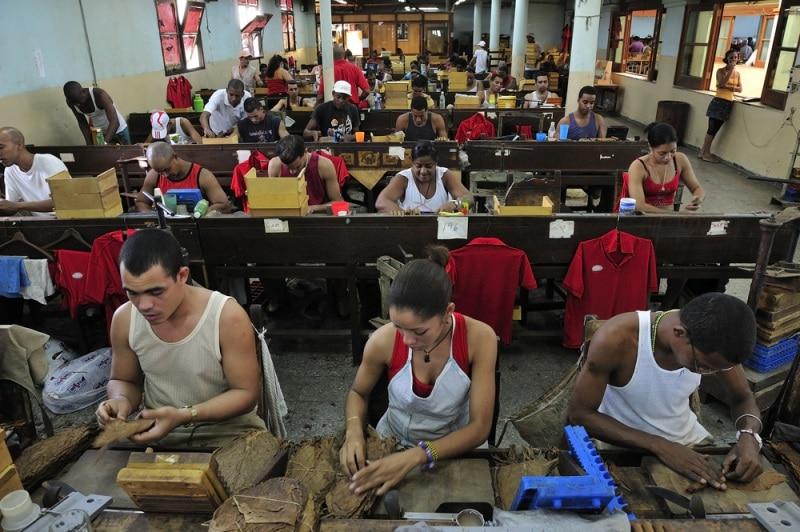 Zwiedzanie fabryki cygar na wyjeździe firmowym.
